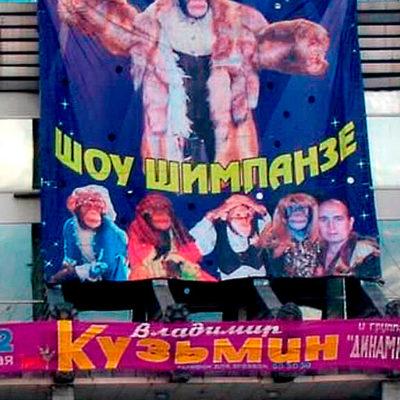 Креативный баннер ШОУ ШИМПАНЗЕ