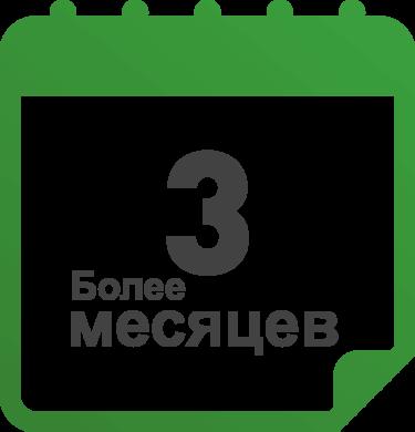 Белее 3 месяцев сервисная иконка