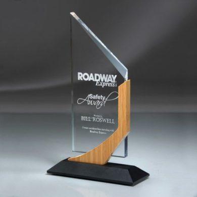 Safety Award ROADWAY Express фото